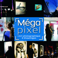 carte-megapixel1.jpg