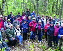 m_association-forestiere