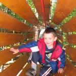 parc-de-l-le-melville-arbre-en-arbre-4-150x150
