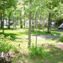 wpid-camping-tournesol-tentes-.jpg