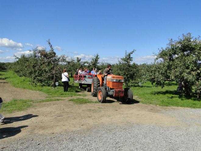 verger_barry_tracteur