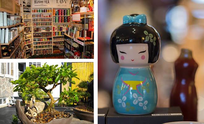 art-culture-bonsai-TM
