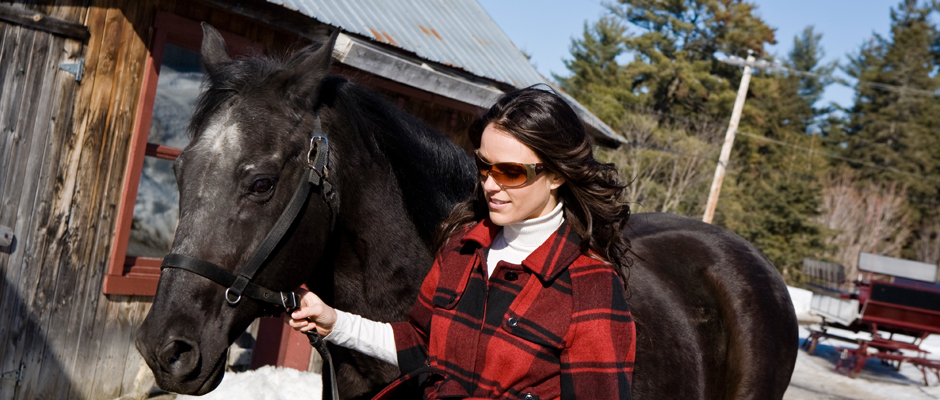equitation-chevaux