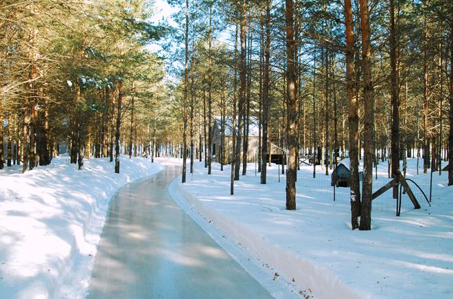 Domaine de la forêt perdue 2015 (3)
