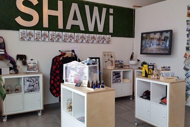 BIT-Info-Shawi-TM2