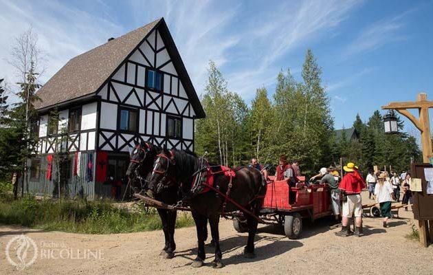 medieval-st-mathieu-parc-cheval