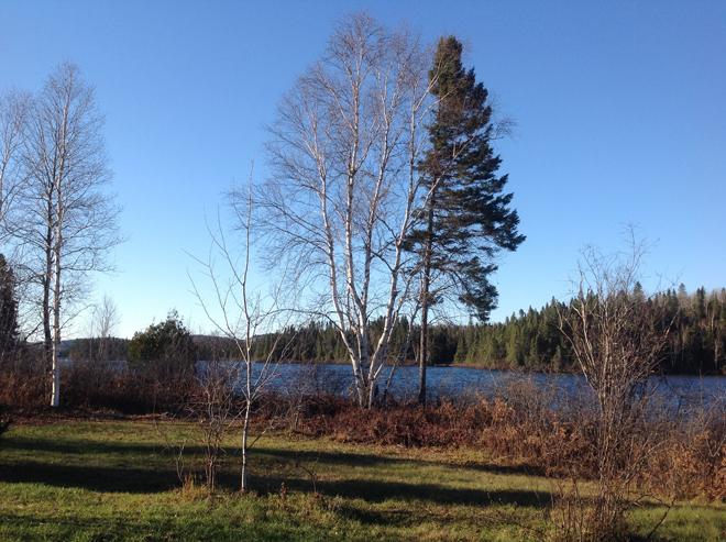 camping-lac-edouard-lac