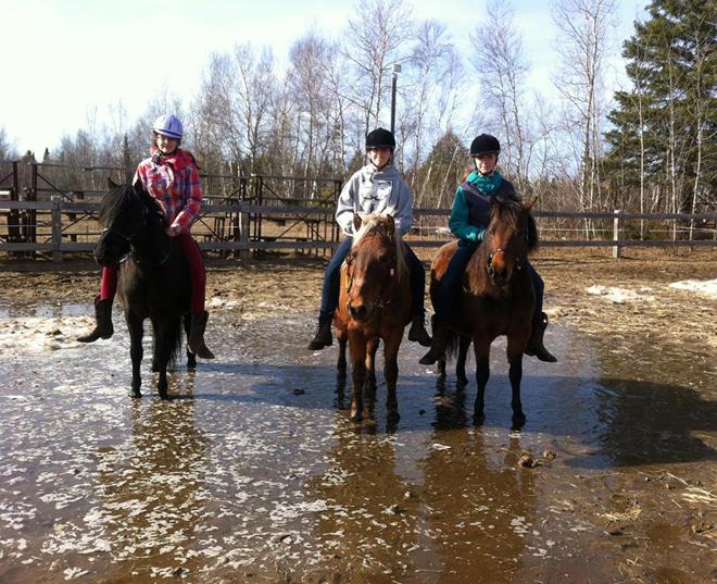 equitation-equi-ami