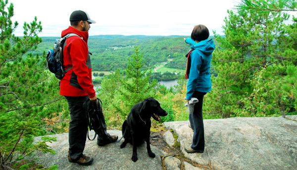campings animaux en mauricie