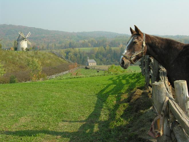 baluchon-cheval-equitation