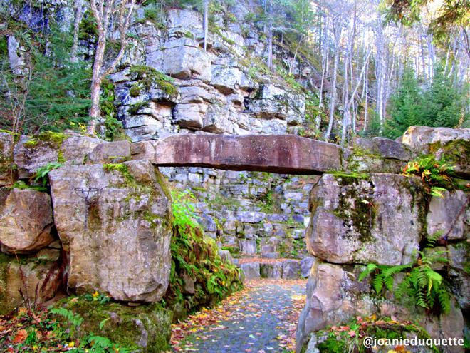 amphitheatre-st-mathieu-foret