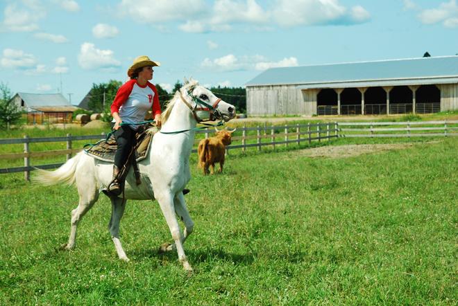 cowboy-dans-lame-baluchon