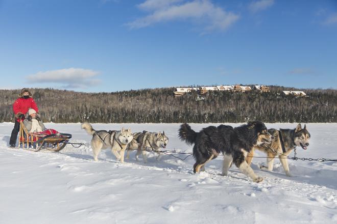 sacacomie-traineau-chiens