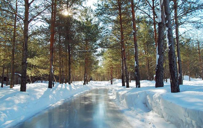 domaine de la forêt perdu