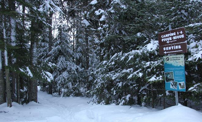 Départ du sentier du tour du lac Clair (4 km)