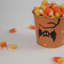 bonbons-halloween-generique-TM