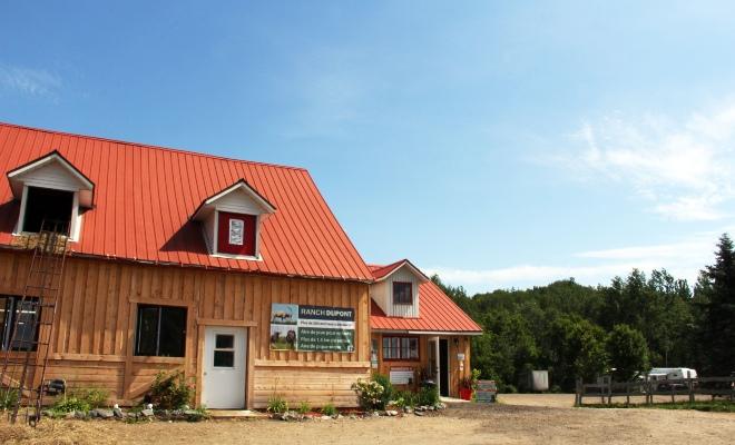 Ranch Dupont, activité pour ceux qui aiment les animaux en Mauricie