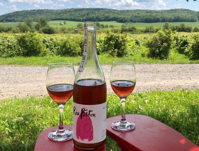Vignoble à visiter en Mauricie pour déguster du vin