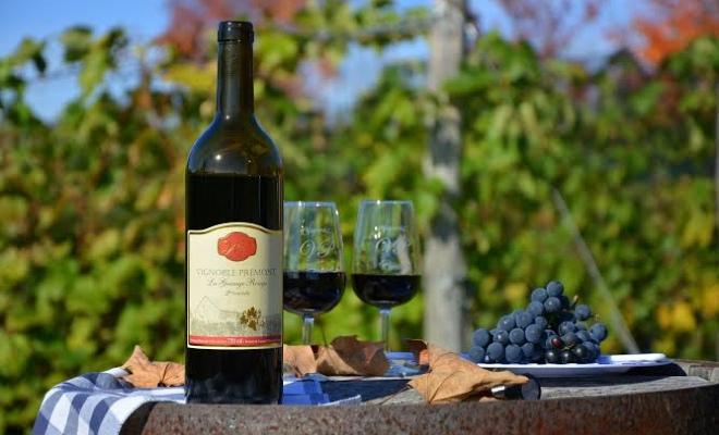 Vignobles en Mauricie pour faire la dégustation de vins
