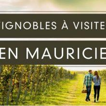 Vignobles à visiter en Mauricie, activité en couple ou entre amies