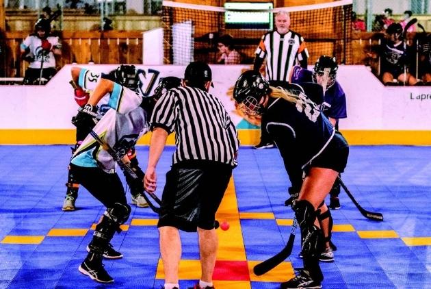 Complexe sportif Alphonse-Desjardins - hockey