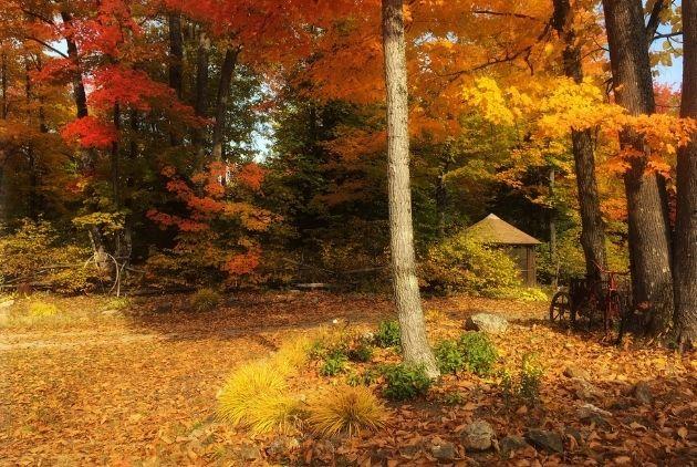 Gîte Comme un Accord extérieur automne